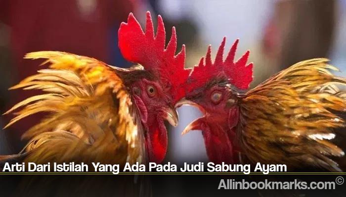 Arti Dari Istilah Yang Ada Pada Judi Sabung Ayam
