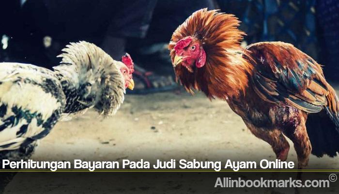 Perhitungan Bayaran Pada Judi Sabung Ayam Online