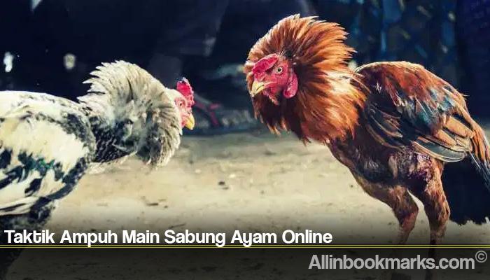 Taktik Ampuh Main Sabung Ayam Online